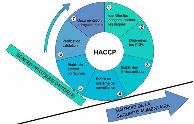 Avantages de la formation à la certification HACCP pour les travailleurs des services alimentaires