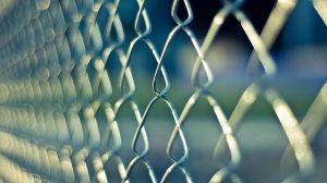 Pourquoi poser des clôtures